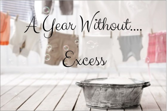 a-year-without-excess
